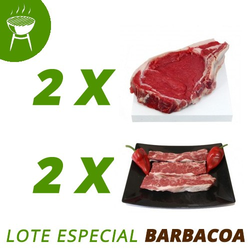 Lote barbacoa ecológica pura carne